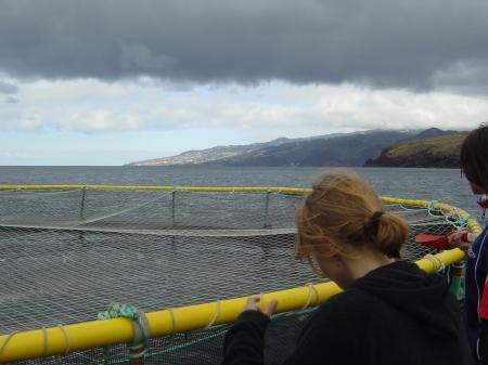 A aquacultura é um segmento em expansão. (Foto Direção Regional de Pescas)