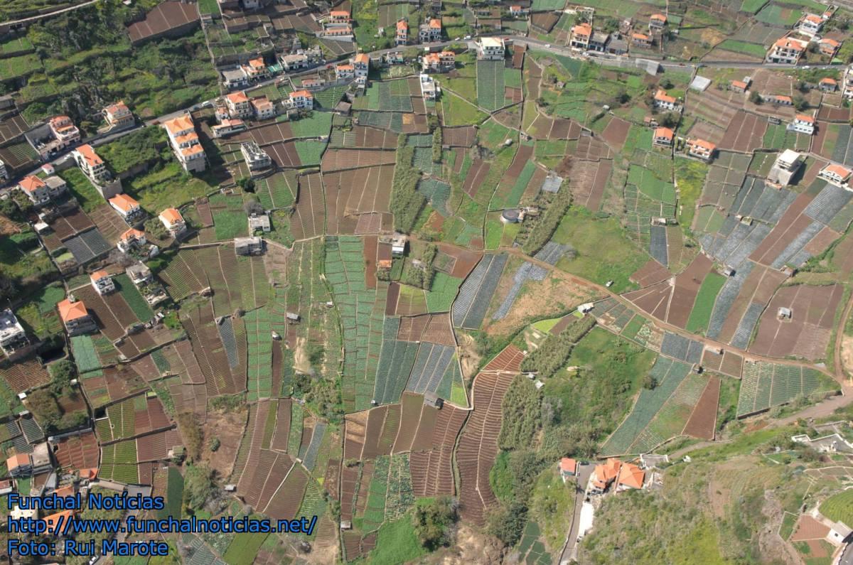 Unidade de cultura entra em vigor dentro de 30 dias: Propriedade rústica na Madeira não pode ser inferior a 500 m2
