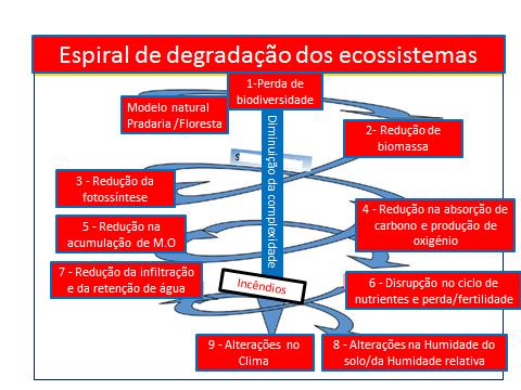 Fig. 1- Representação de espiral de degradação dos ecossistemas.