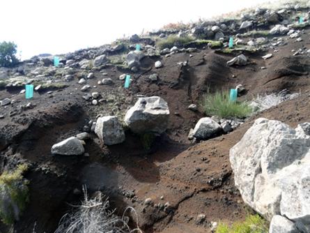 Fig.1 - Deslizamento ocorrido no Pico do Areeiro em 21/10/2015 (Foto: José Marques)