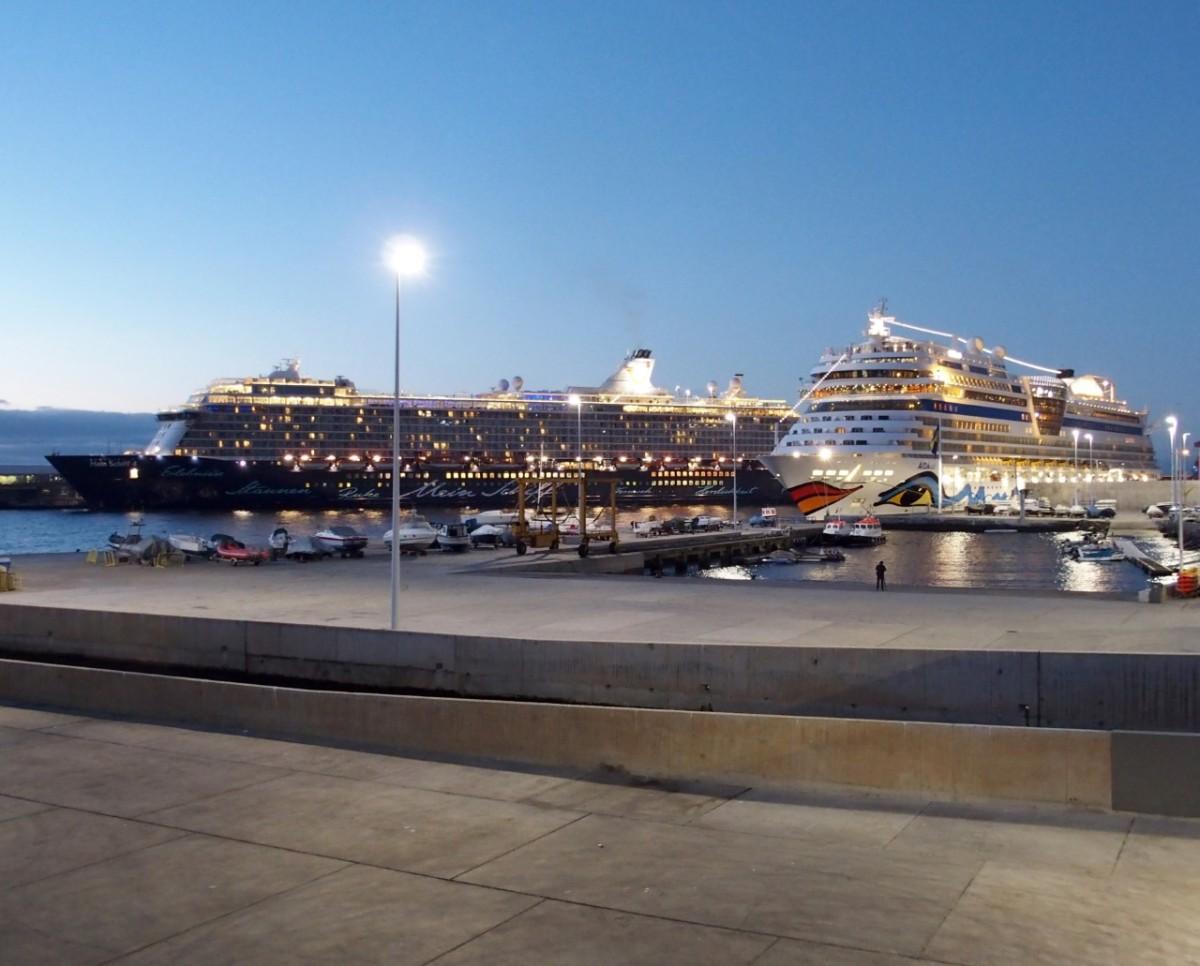 A imagem do dia: gigantes dos mares animam o Porto do Funchal