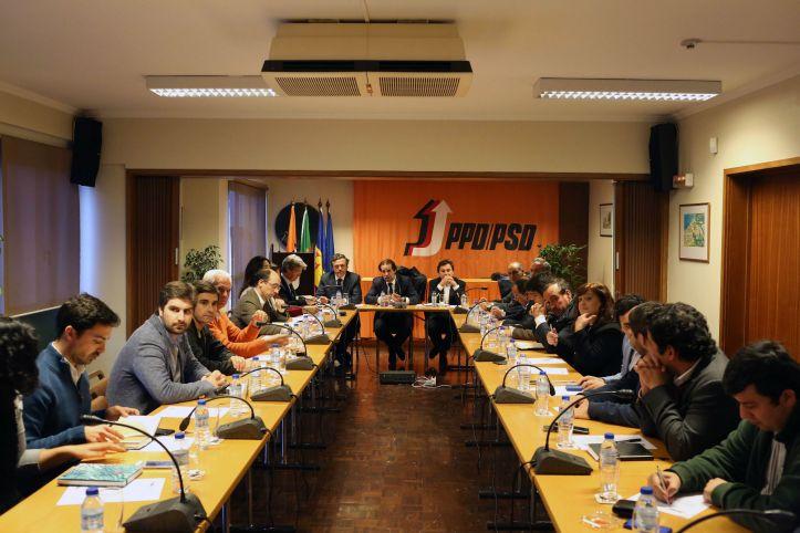 PSD-M-Reunião Comissão Politica BPSD4_OCS