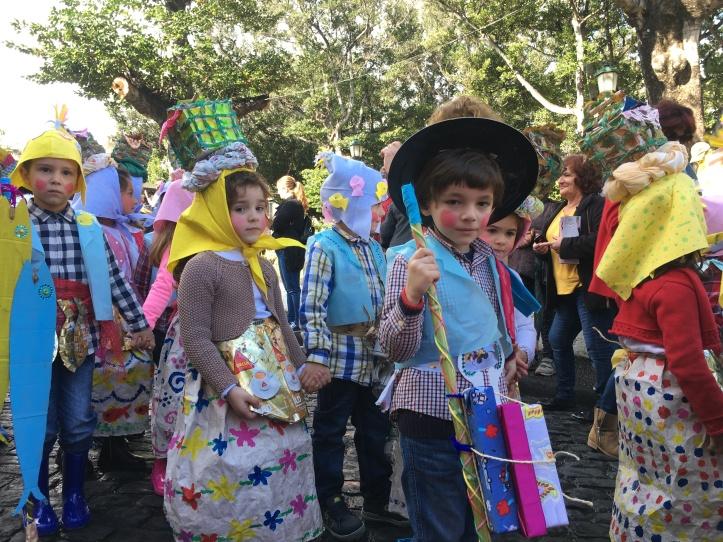 Carnaval escolas de Santa Cruz B