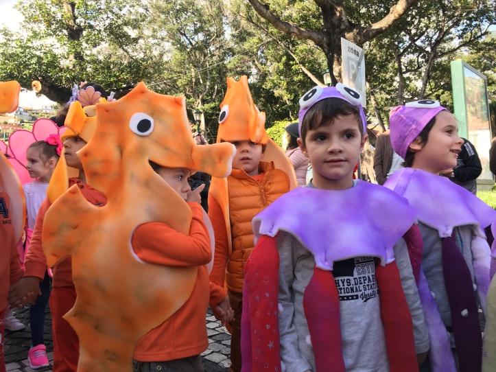 Carnaval escolas de Santa Cruz E