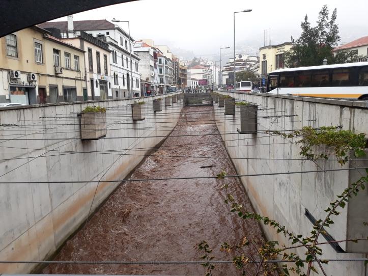 Ribeira Funchal C