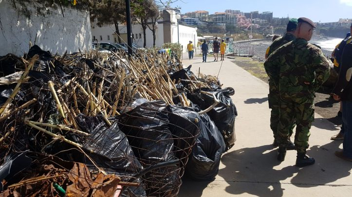 limpeza Praia Formosa