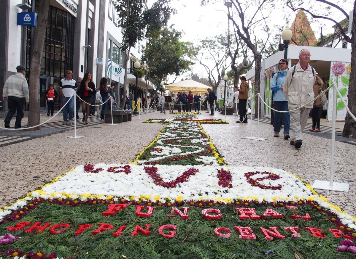 Turismo enche cidade com a flor no centro das atenções